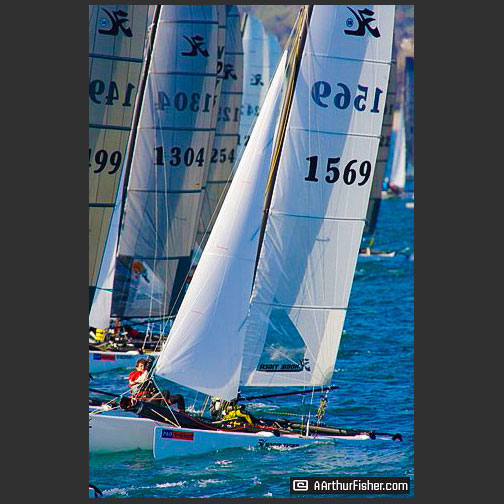 Hobie Tiger Racing